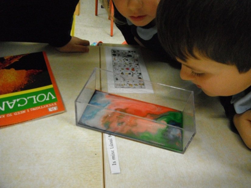 Science Week Experiment