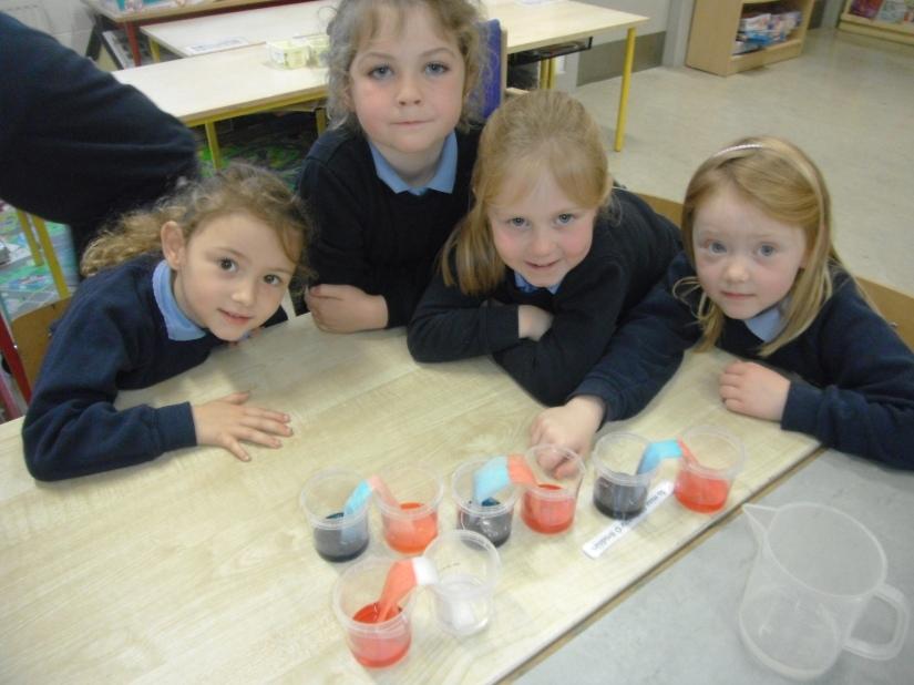 Science Week - experimenting
